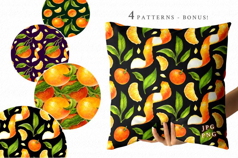 tangerines-watercolor-clip-art