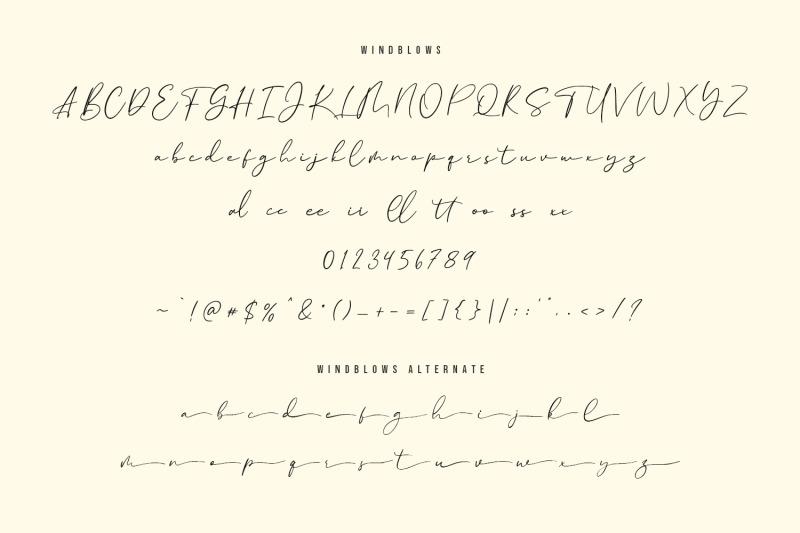 windblows-script-typeface