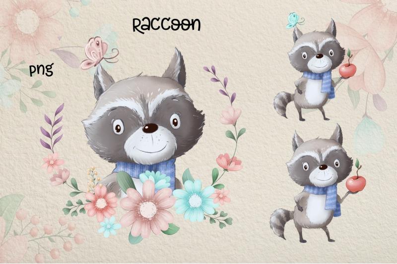 cute-raccoon