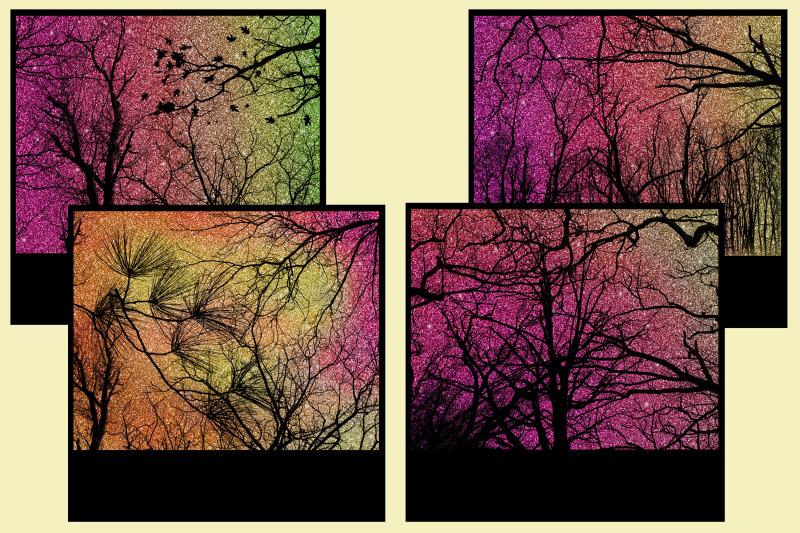 sunset-forest-glitter-snapshot-backgrounds-10-image-set