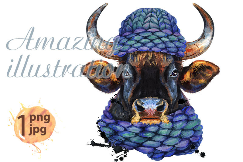 watercolor-illustration-of-black-powerful-bull-in-knitted-blue-hat