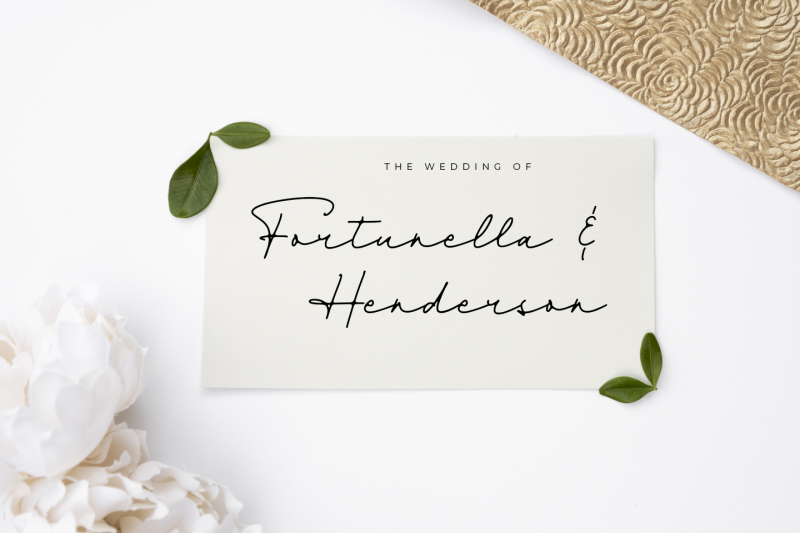 dienilla-signature-font
