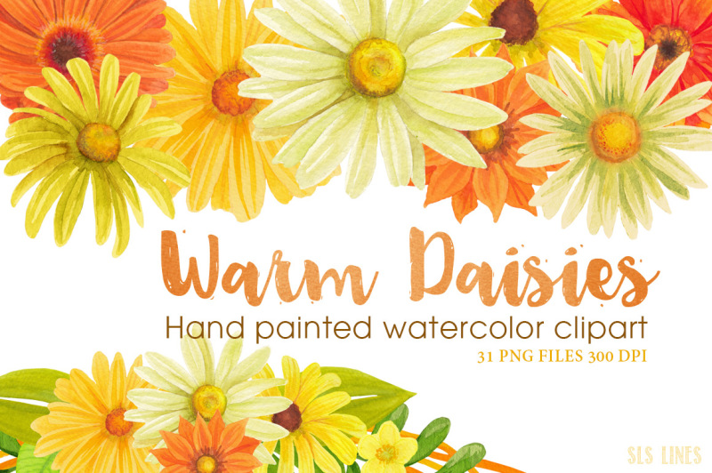 yellow-daisies-watercolor-clipart