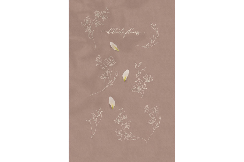 line-drawing-botanical-illustrations-white-color-flowers-wreaths