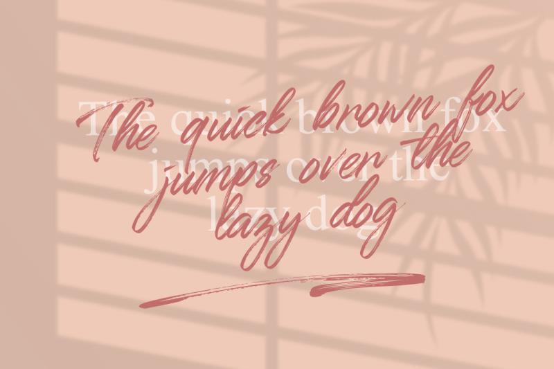 qillsey-einstein-a-handwritten-font