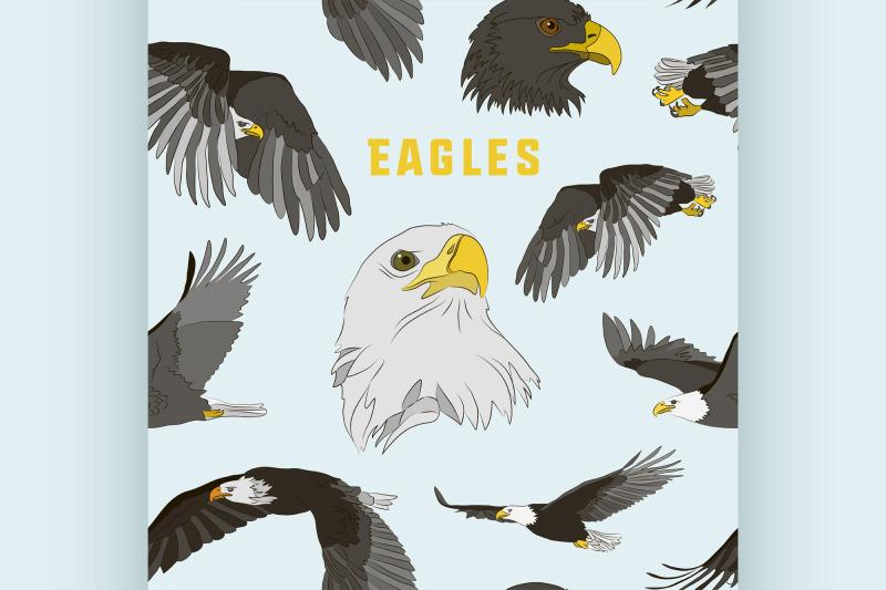 set-of-eagles-pattern