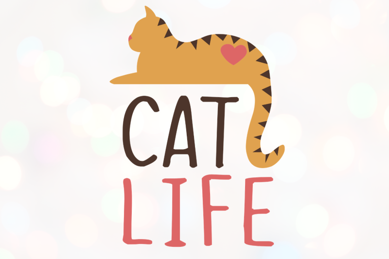 the-cat-world-bundle