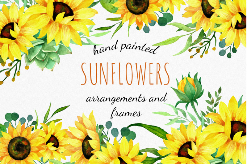 Sunflowers watercolor clipart, bouquets and frames By RED ...