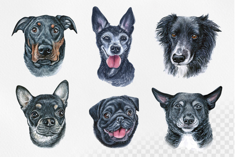 black-dogs-watercolor-set-dog-illustrations-cute-12-dogs