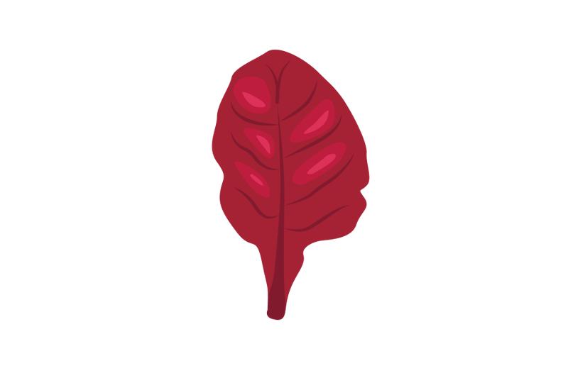 vervain-leaf