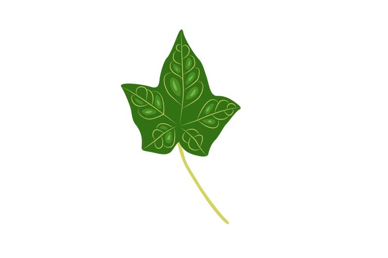 hera-leaf