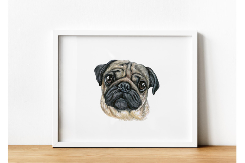 pug-watercolor-dog-set-illustrations-cute-and-funny-10-dog