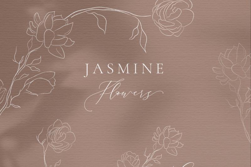 line-drawing-white-jasmine-flower-illustrations-wreaths-frames-leaf