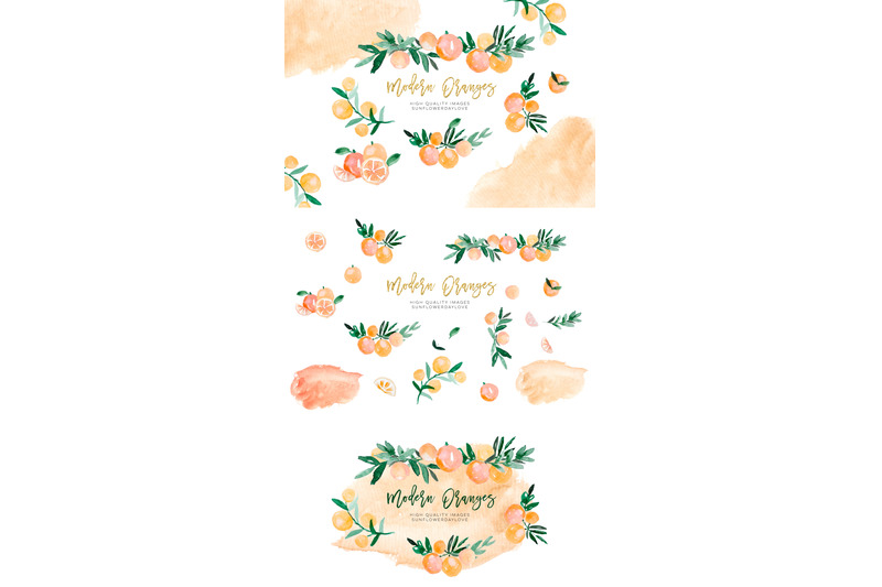 orange-citrus-watercolor-clipart-bitter-orange-wall-art