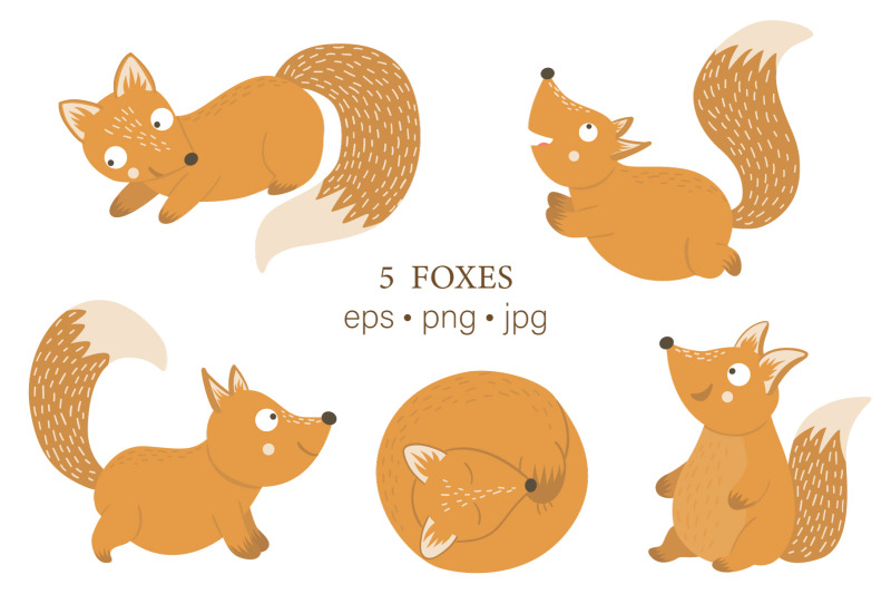 funny-foxes