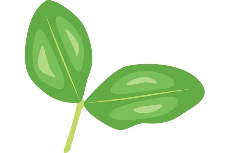 pea-leaf