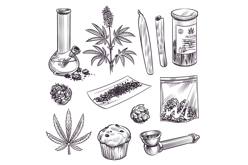 sketch-cannabis-cosmetic-and-medical-plant-marijuana-leaves-weed-joi