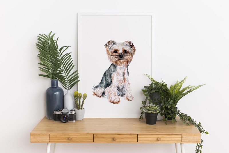 yorkshire-terrier-dog-watercolor-set-illustrations-7-dogs