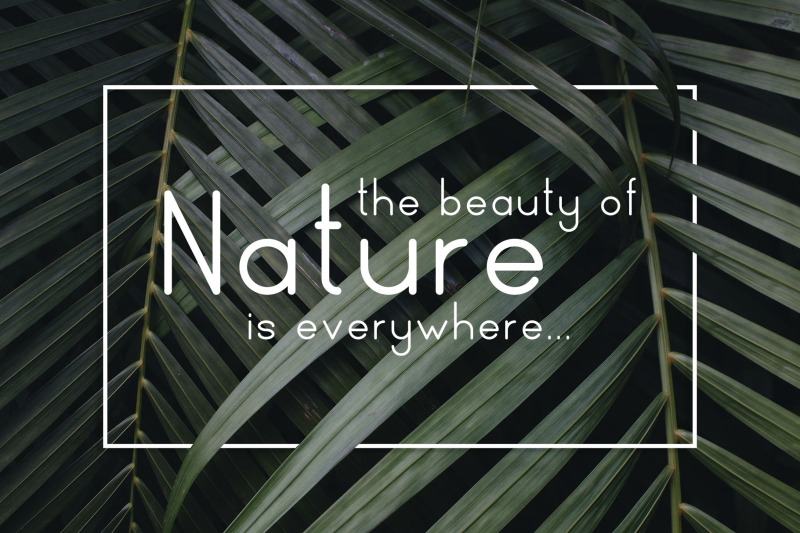 naturaling-display-font