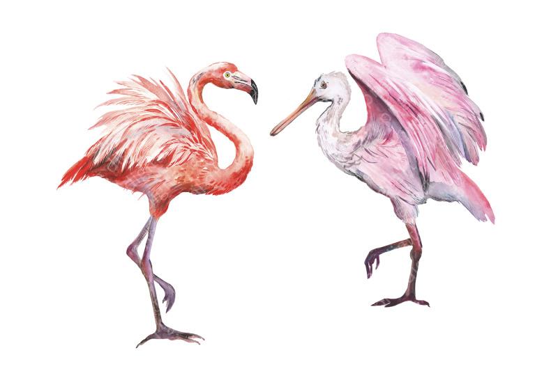 watercolor-tropical-birds-summer-tropical-flamingo-parrot-toucan