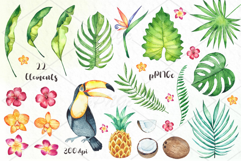 watercolor-tropical-mood-clipart