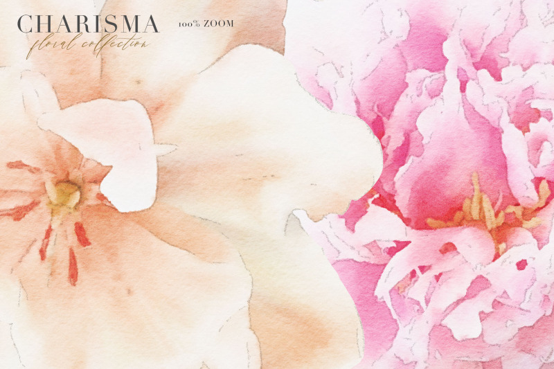 charisma-watercolor-flowers