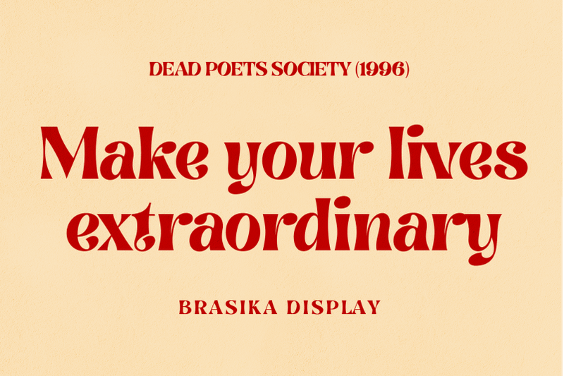 brasika-display