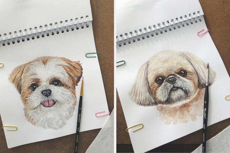 shih-tzu-watercolor-dog-illustrations-cute-6-dog