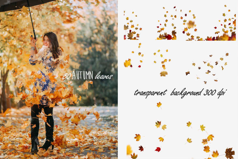 fall-leaves-overlays-photoshop
