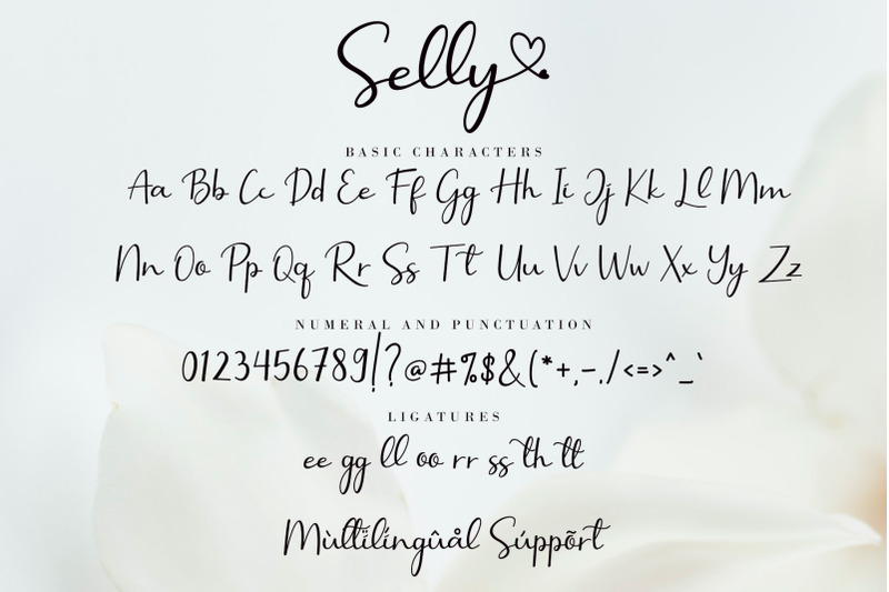 selly-calligraphy