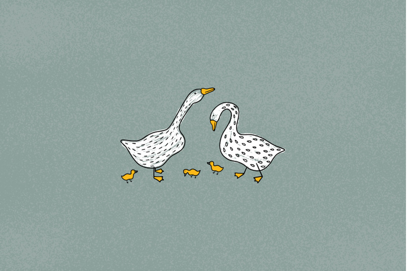 funny-geese