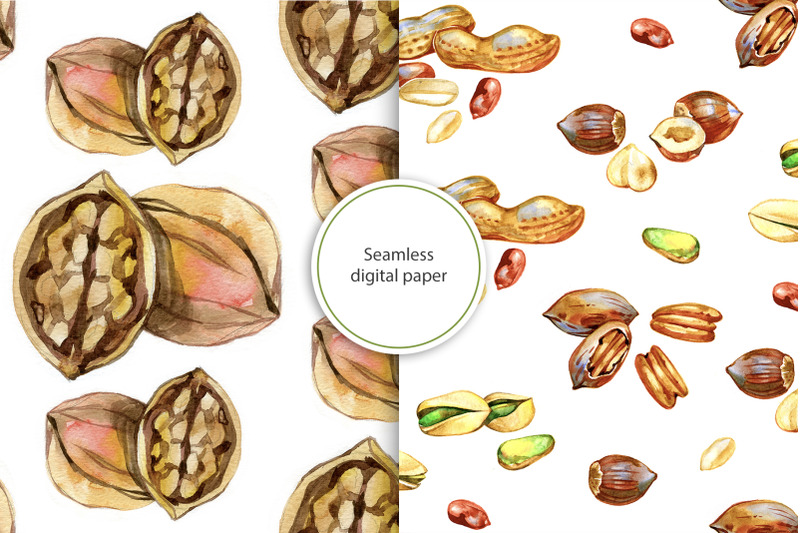 watercolor-nuts