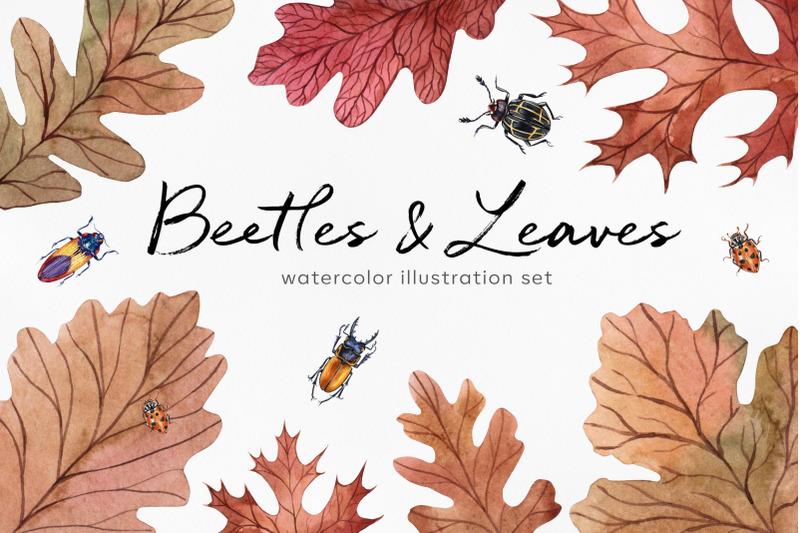 autumn-watercolor-set-illustrations-beetles-leaves-acorns