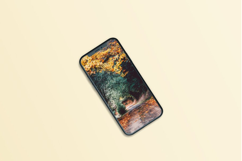 phone-11-mock-ups