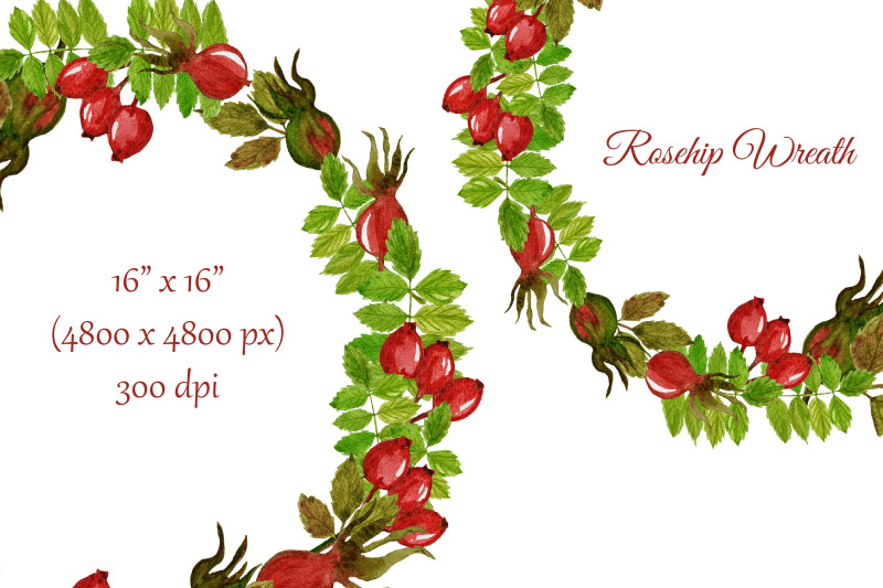 fall-watercolor-rosehip-wreath-thanksgiving-clipart