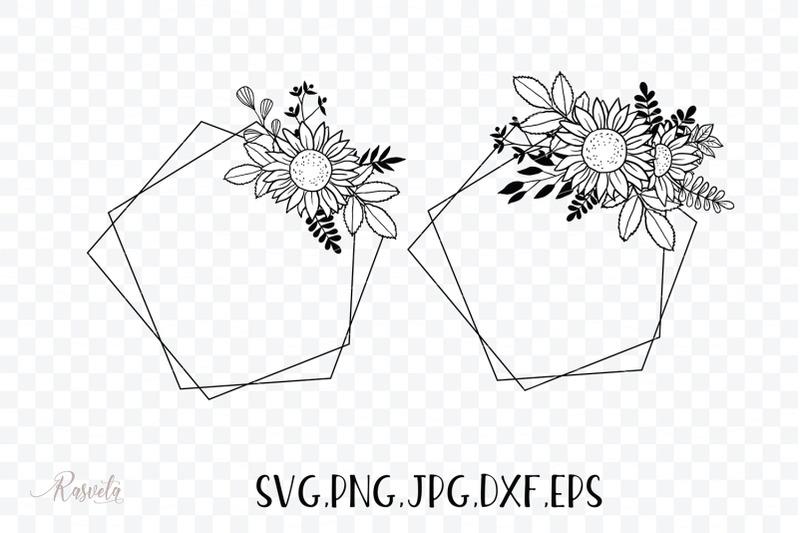 geometric-frames-sunflower-amp-plants