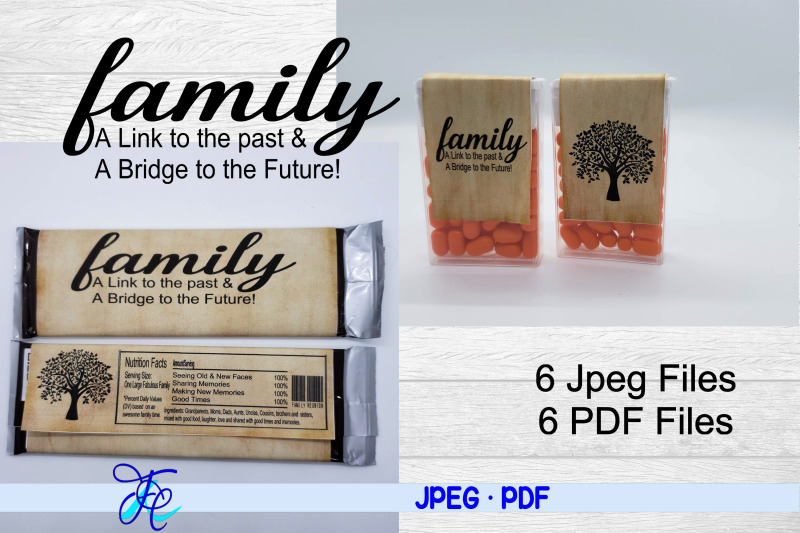 family-a-link-to-the-past-a-bridge-to-the-future
