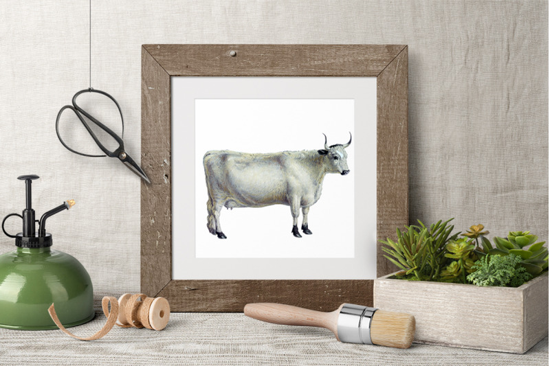 cow-clipart-white-forest
