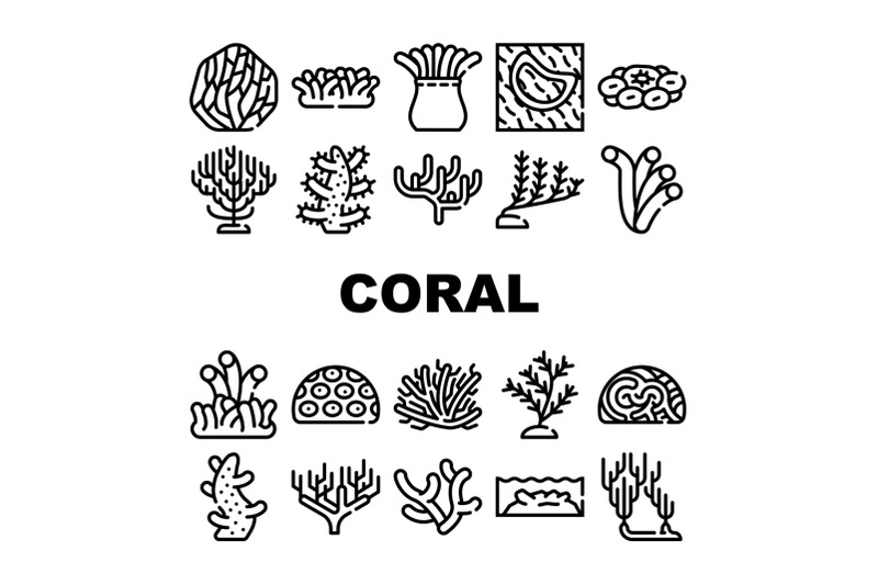 coral-sea-aquatic-reef-collection-icons-set-vector