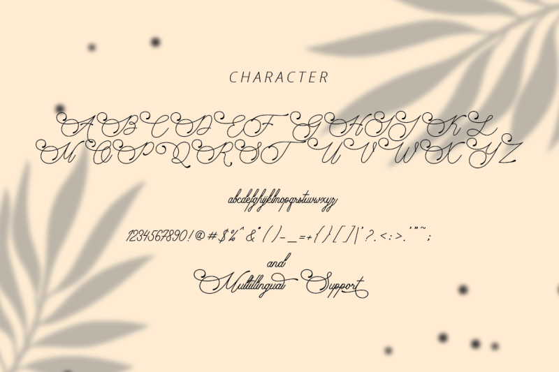 audrena-beautiful-monoline-font