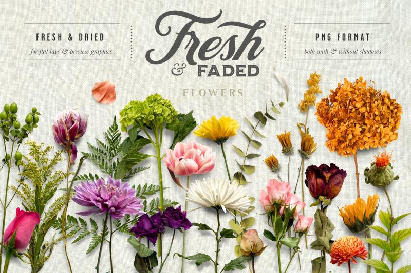 fresh-amp-dried-flower-scene-creator
