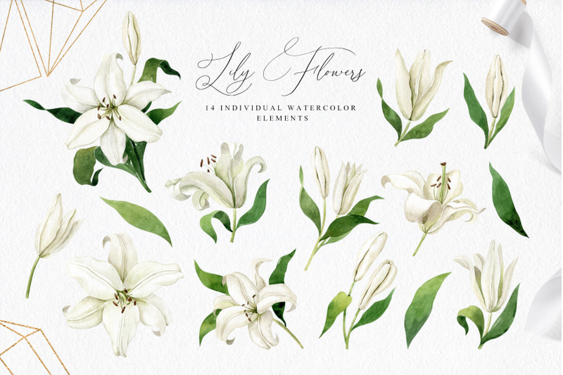white-lilies-watercolor-collection