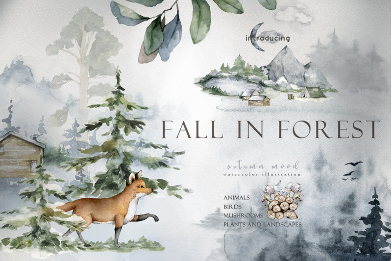 fall-in-forest-autumn-mood