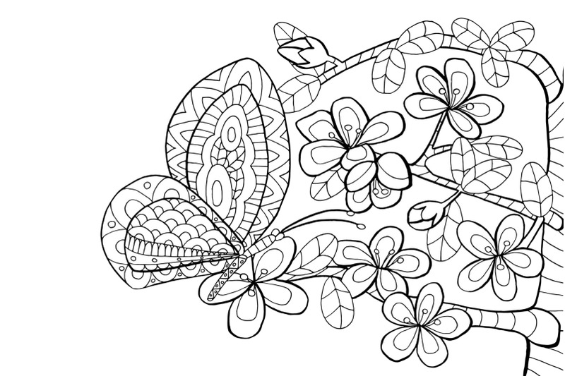 coloring-pages-flowers-and-insects