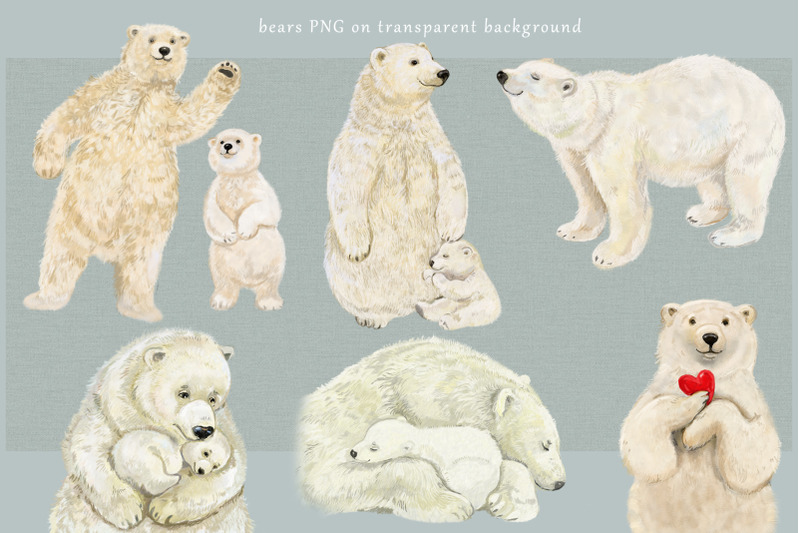 polar-bear-clipart-illustrations