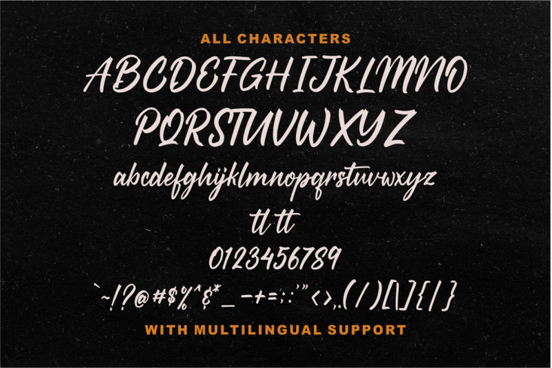 starships-a-brush-script-typeface