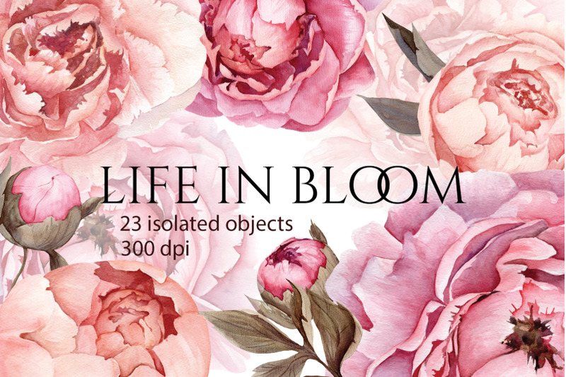 life-in-bloom