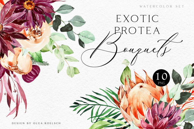 watercolor-protea-and-burgundy-flowers-clipart-tropical-floral-bouqu