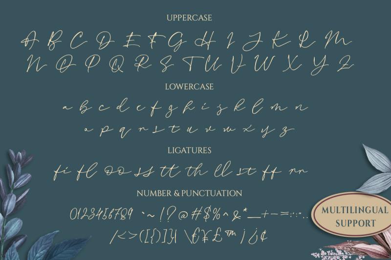 revalina-signature-script