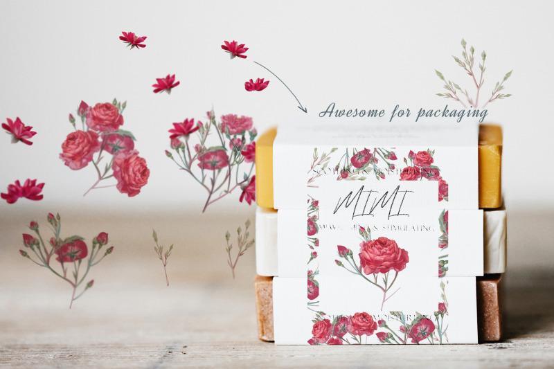 pretty-rose-vector-clipart-set
